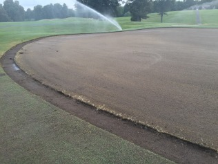 #8 green day before