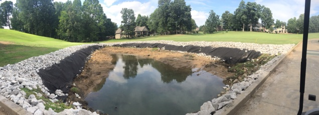 Pond Panoramic